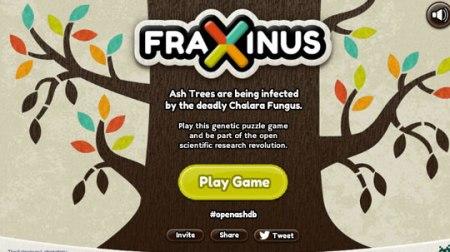 Fraxinus00